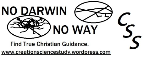 Bumper Sticker to share with your friends! put this in your cars and workplaces