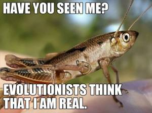darwinists